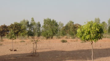 A village on the outskirts of Ouagadougou where Myra's Wells has drilled a well.