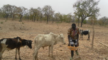 Myra's Wells aiming for 100 wells providing clean water in Burkina Faso